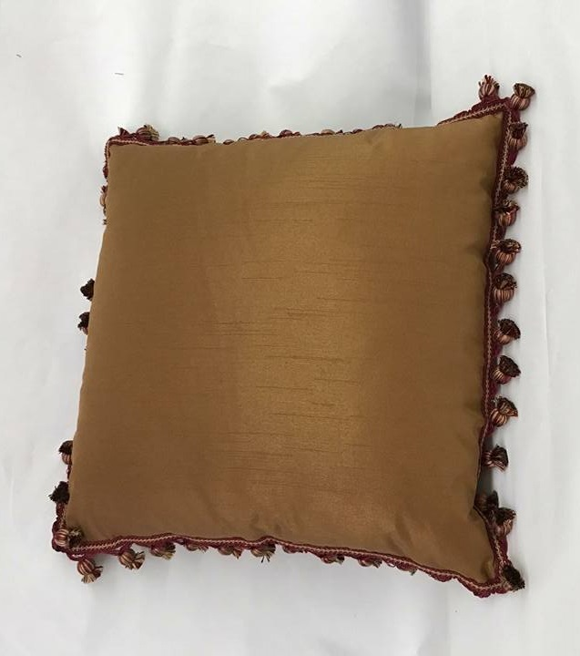 Decorative Pillow with Trim